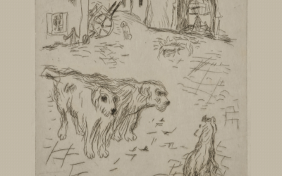 Dingo (1913)